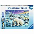 Polar Animals Gathering 300 Pc Puzzle